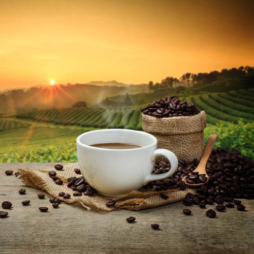 Höreders Brot und Stollenshop Kaffee